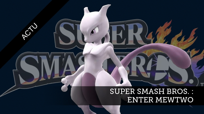 Super Smash Bros : Enter Mewtwo !