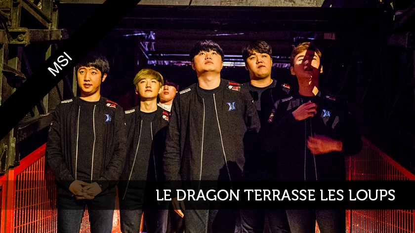 Le dragon face aux loups