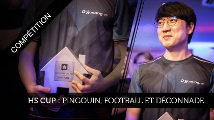 HomeStory Cup : Pingouin, Football et Déconnade